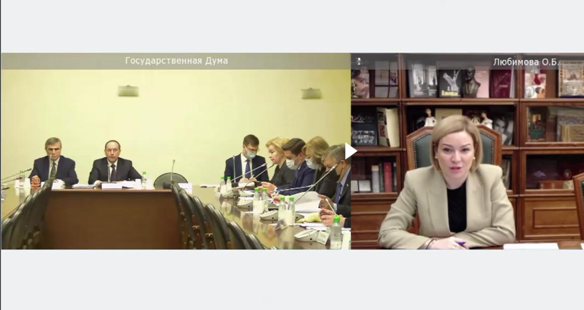 Комитет Государственной Думы по образованию и науке поддержал законопроект Президента об особом регулировании реализации образовательных программ в области искусств и деятельности детских школ искусств